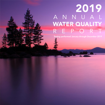 2019 Report